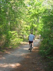 2-virginia-beach-trails